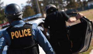 Police Schools